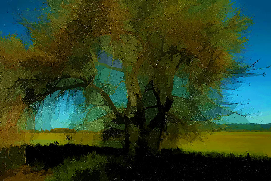 Painterly Photograph - Willow Tree by Bonnie Bruno