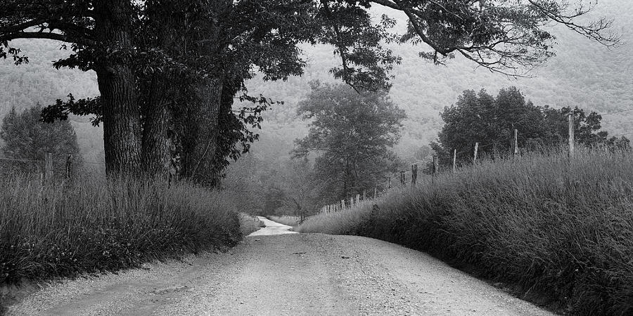 Cades Cove Photograph - Winding Rural Road by Andrew Soundarajan