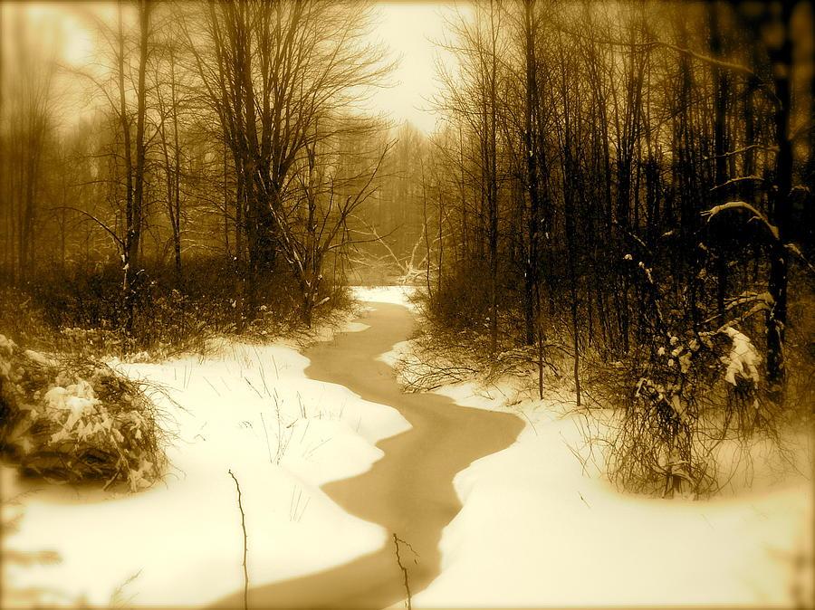 Landscape Photograph - Winding Through by Arthur Barnes