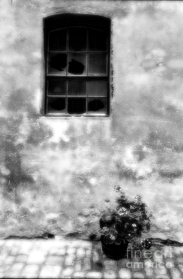 Window Photograph - Window And Sidewalk Bw by Mike Nellums