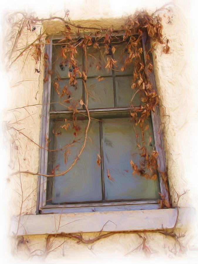 Windows Photograph - Window In Time by FeVa  Fotos