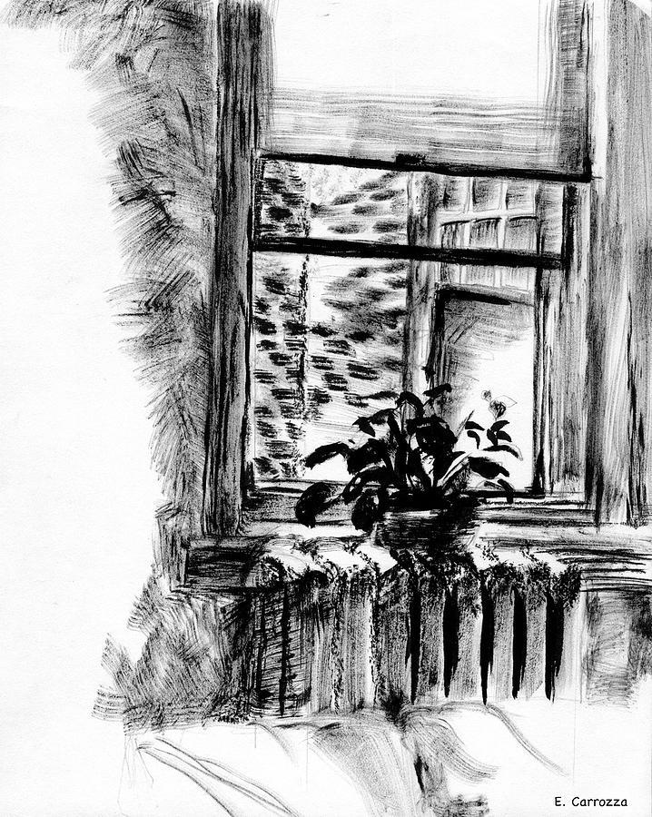 Interior Drawing - Window Study by Elizabeth Carrozza