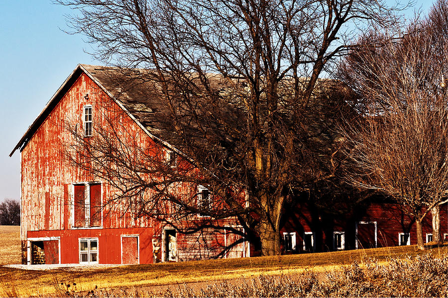 Barn  - Windows And Doors by Edward Peterson