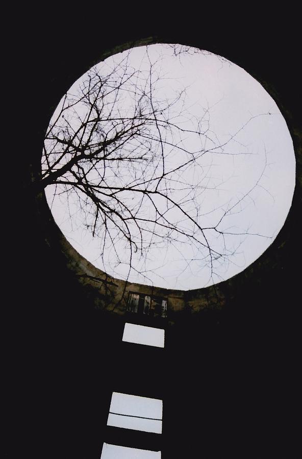 Barn Photograph - Windows To The Moon by Jennifer Choate