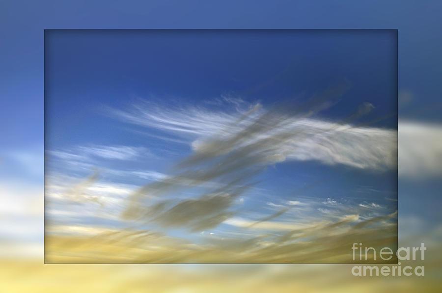 Windswept Photograph - Windswept 2 by Kaye Menner