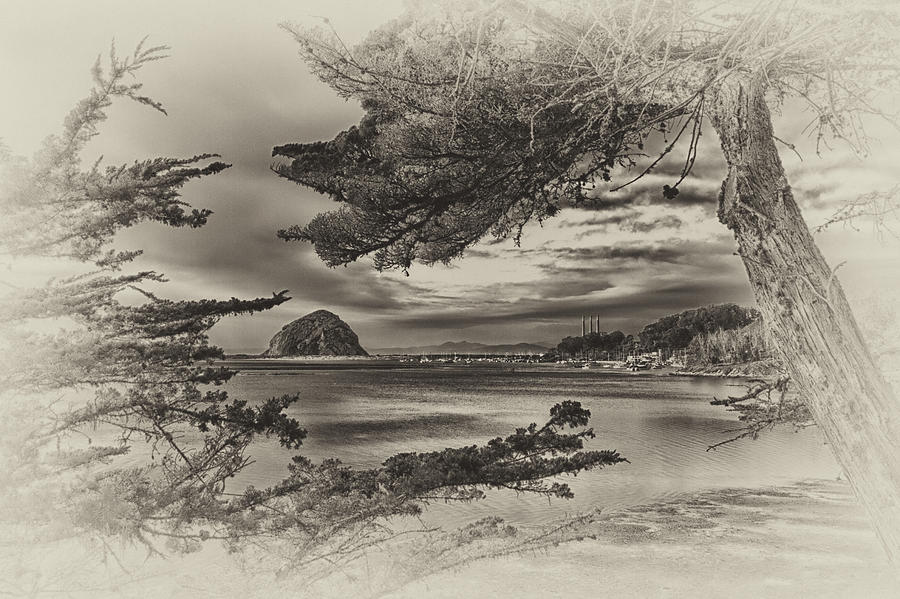 Morro Bay Photograph - Windy Cove Bw by Beth Sargent