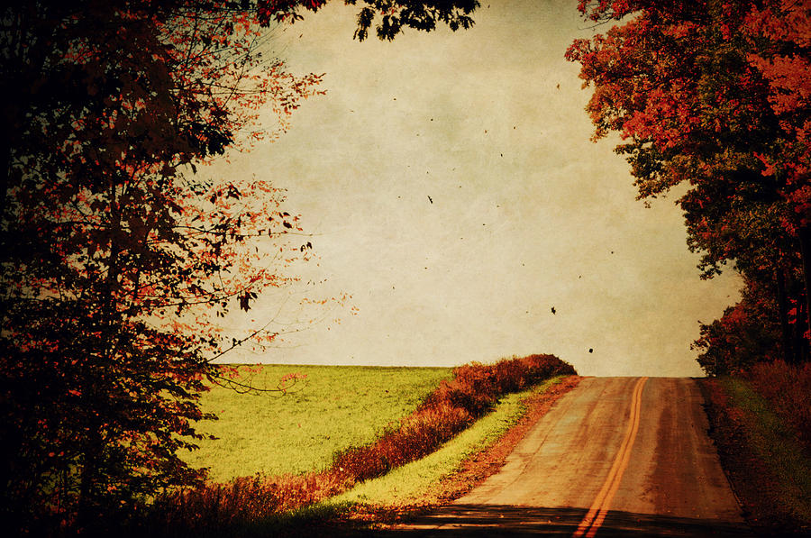 Fall Photograph - Windy Journey by Emily Stauring