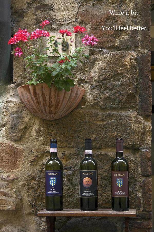 Italian Wine Photograph - Wine A Bit by Sally Weigand