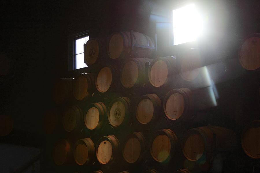 Wine Barrels Photograph - Wine Barrels by Viktor Savchenko