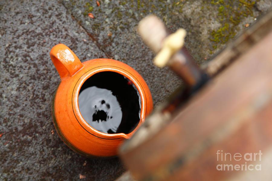 Wine Photograph - Wine Dripping by Gaspar Avila