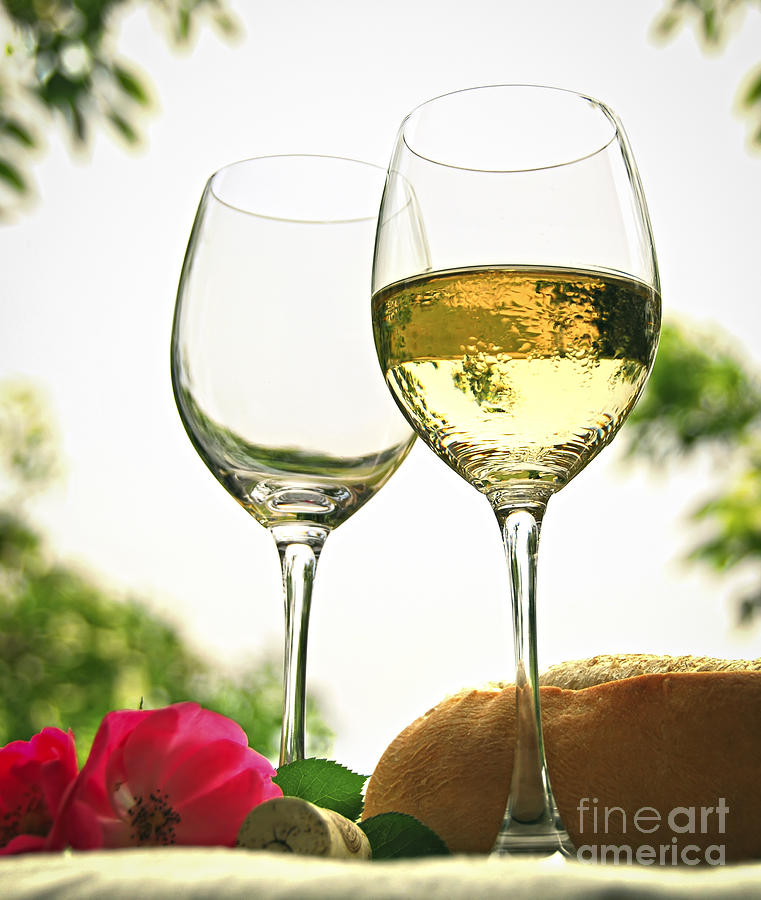 Wine Photograph - Wine Glasses by Elena Elisseeva