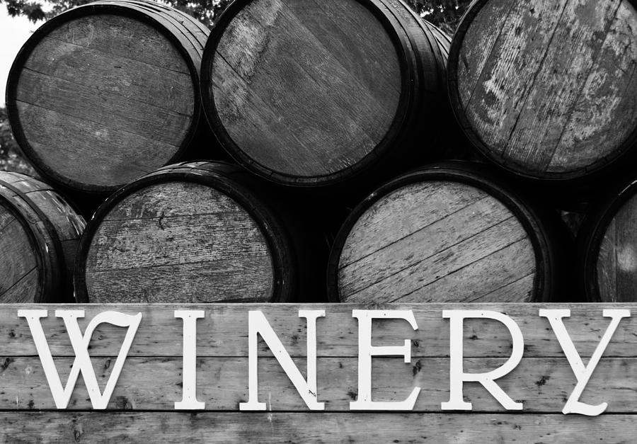 Wine Photograph - Winery  by Meagan  Visser