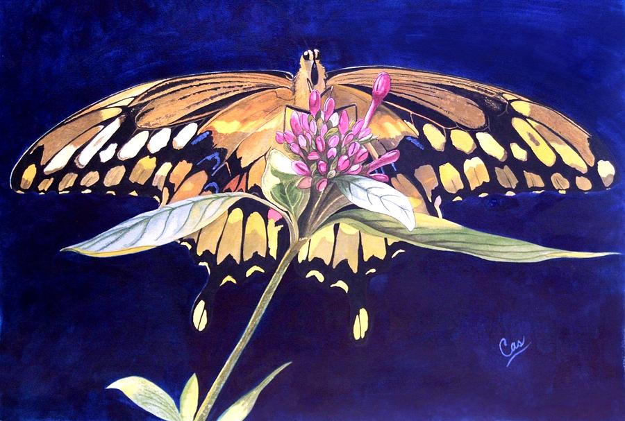 Butterfly Painting - Wings by Karen Casciani