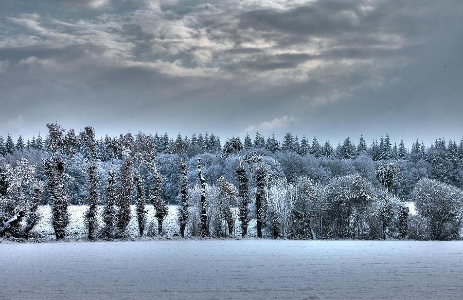 Horizontal Photograph - Winter At France by Dominique Guillaume est un Auteur-Photographe