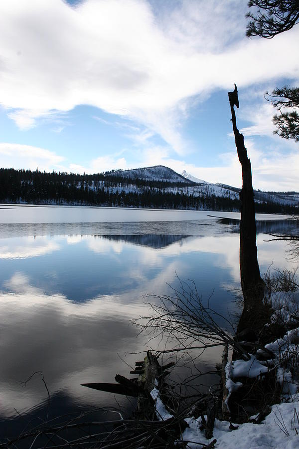 Winter At The Lake Photograph by Ken Riddle