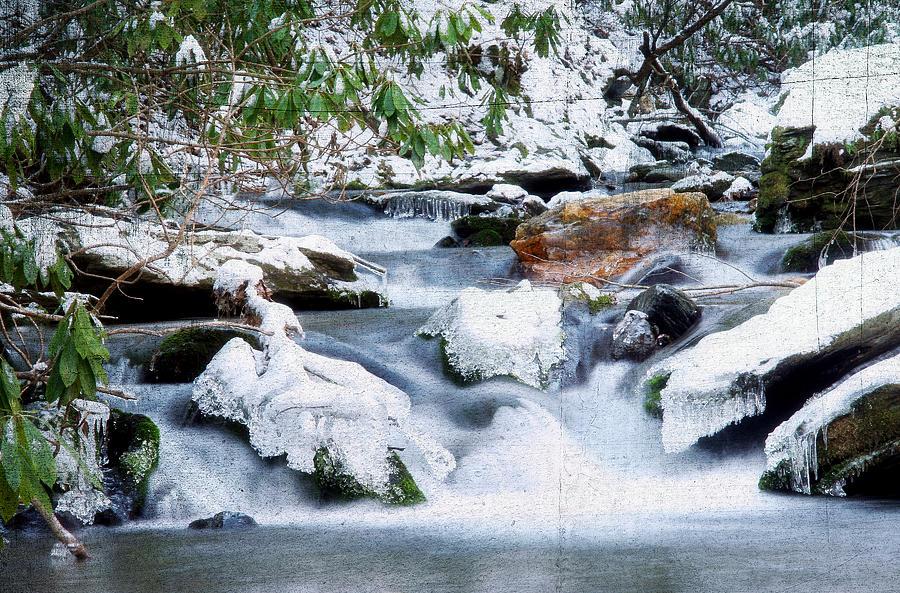 Beautiful Photograph - Winter by Darren Fisher