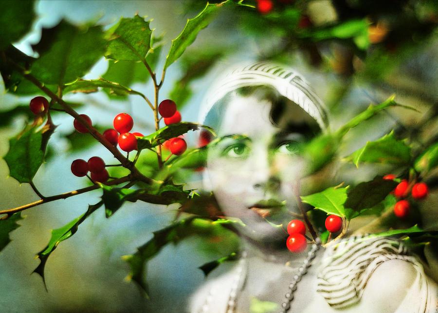 Secret Garden Photograph - Winter Fancies by Rebecca Sherman