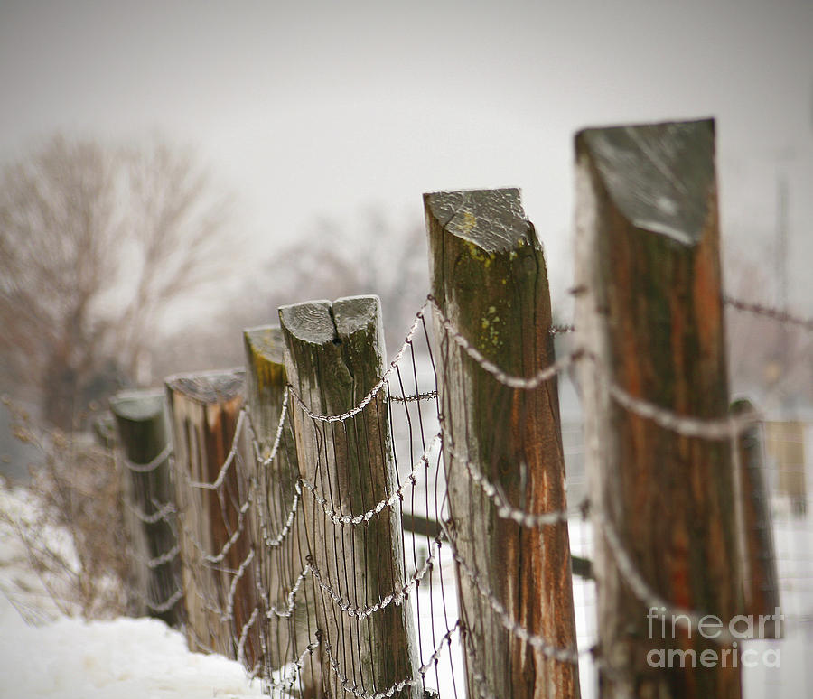 Cloud Photograph - Winter Fence by Sandra Cunningham