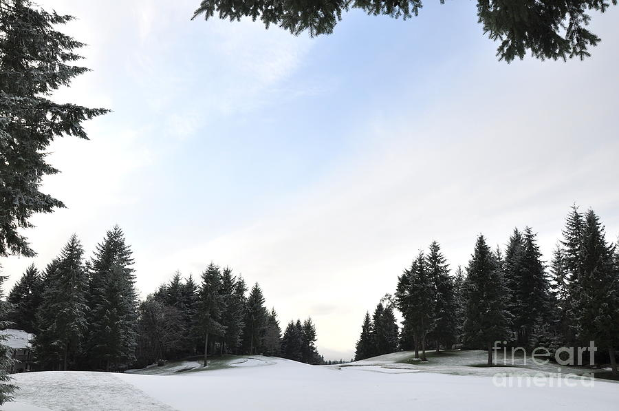 Golf Photograph - Winter Golf Course  4 by Tanya  Searcy