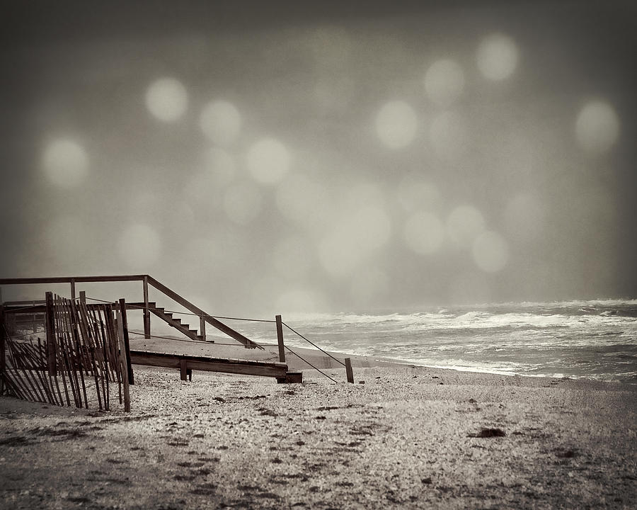 Black And White Photograph - Winter In Florida by Mario Celzner