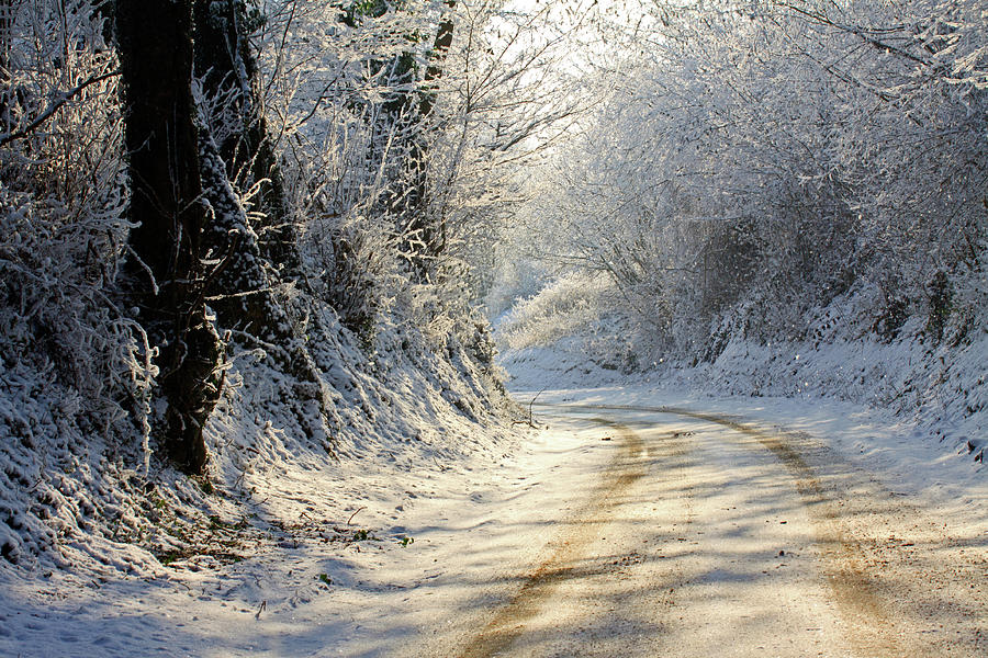 Horizontal Photograph - Winter In Small Countryside Road by © Frédéric Collin