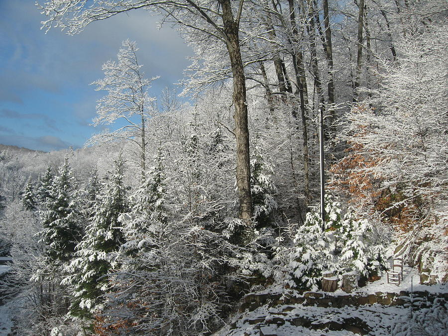 Winter In The Laurentians Photograph by Marlene Roy