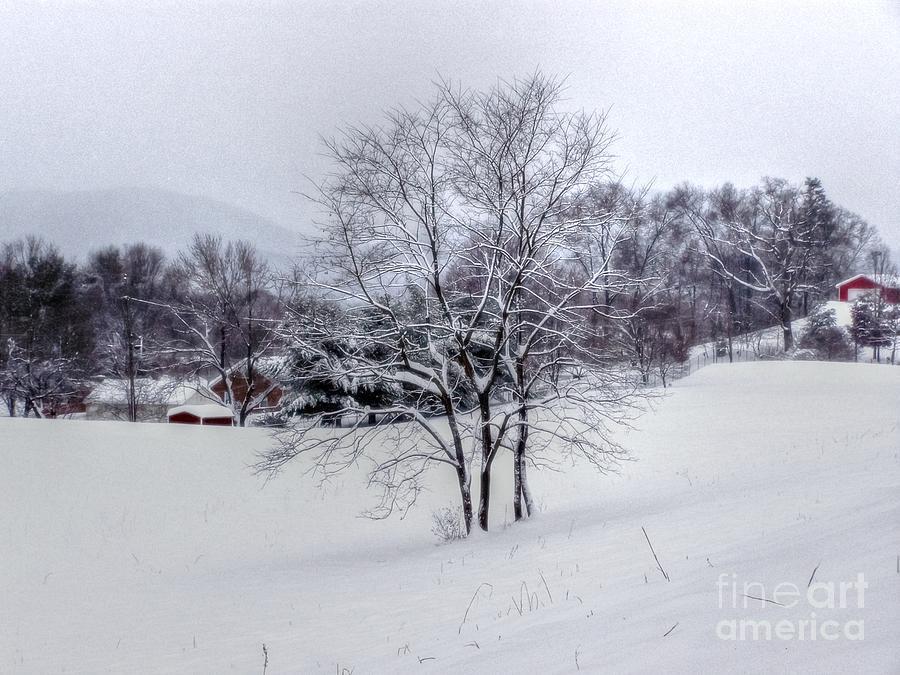 Alone Photograph - Winter Landscape 6 by Dan Stone