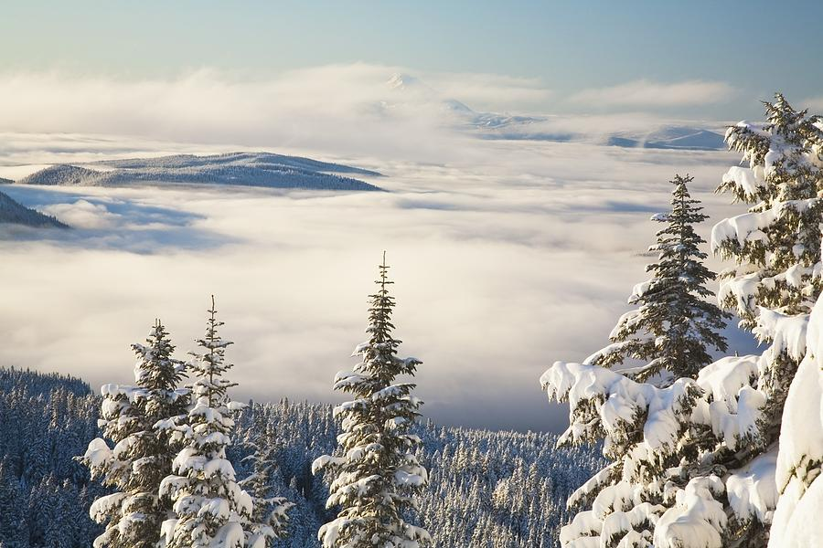 Forest Photograph - Winter Landscape With Clouds And by Craig Tuttle