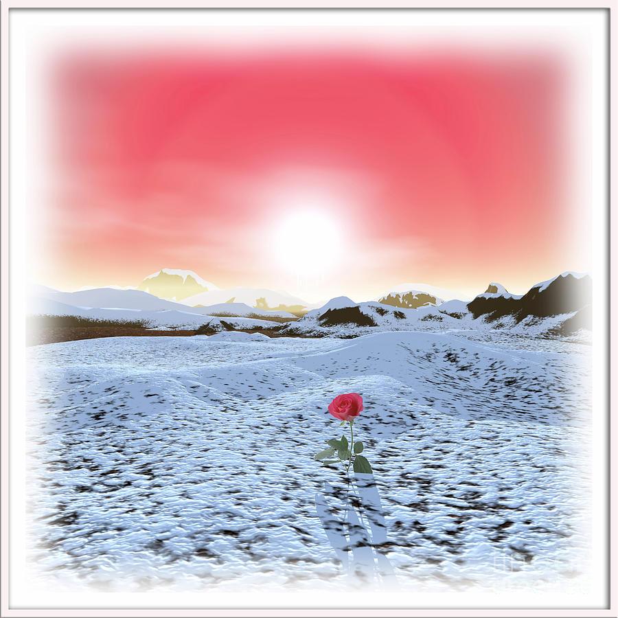 Winter Digital Art - Winter Rose by Harald Dastis