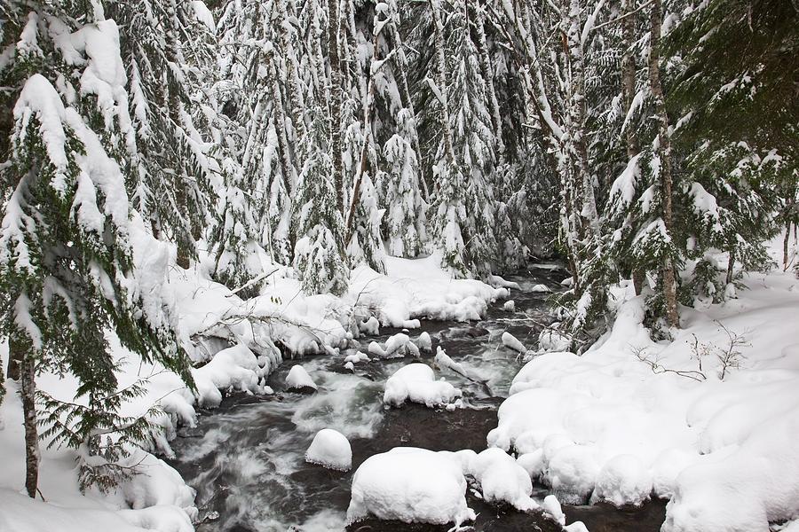 Flow Photograph - Winter Snow Along Still Creek In Mt by Craig Tuttle