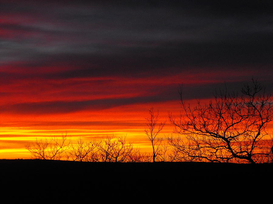 Winter Sunset Photograph - Winter Sunset by Rebecca Cearley
