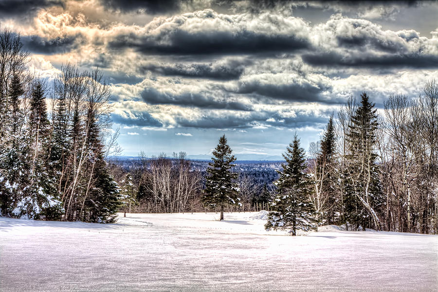 Winter Photograph - Winter Time by Gary Smith