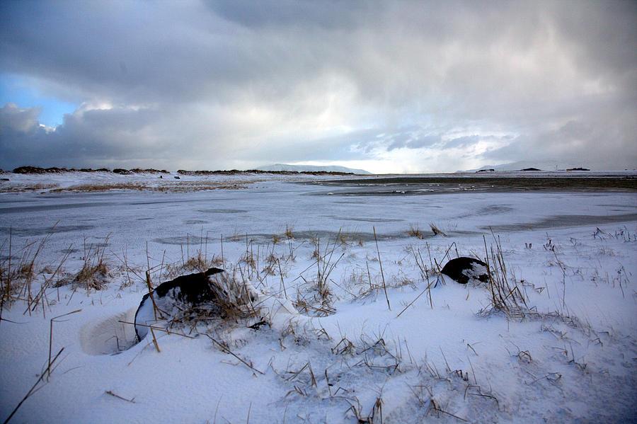 Landscape Photograph - Winter by Vala O