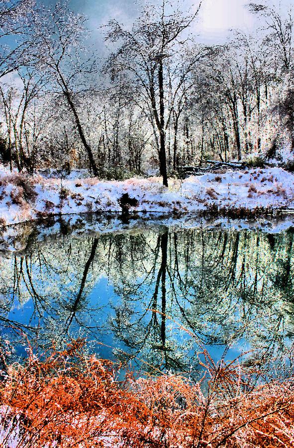 Ice Photograph - Winter Wonder by Kristin Elmquist
