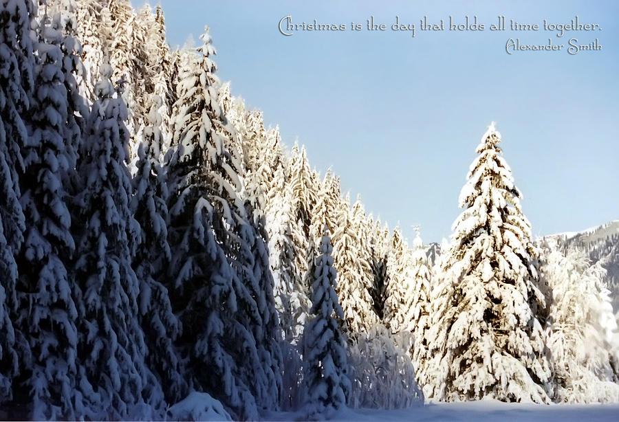 Winter Photograph - Winter Wonderland Austria Europe by Sabine Jacobs