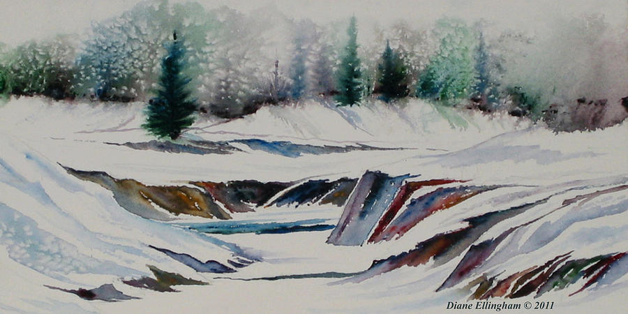 Winter Wonderland by Diane Ellingham