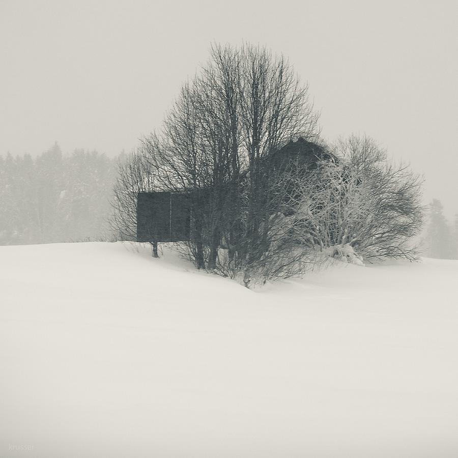 Winter World #2 Photograph by Nikolay Krusser