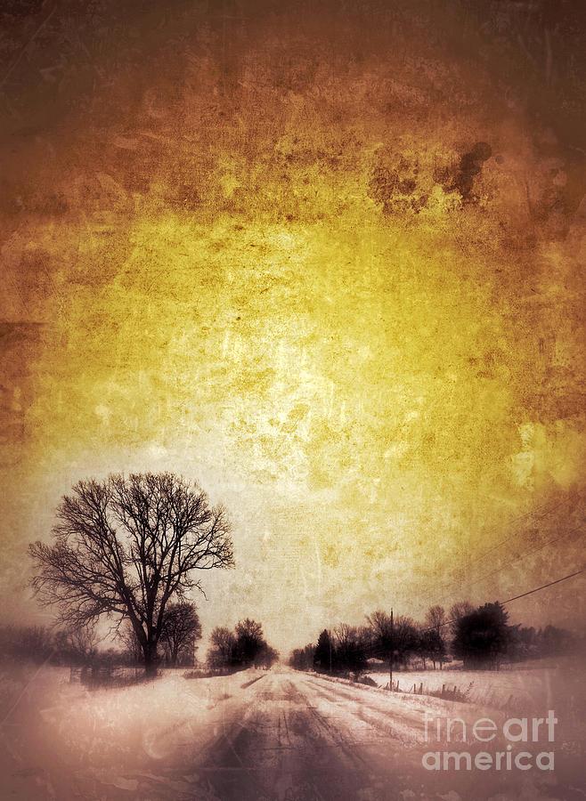 Tree Photograph - Wintery Road Sunrise by Jill Battaglia