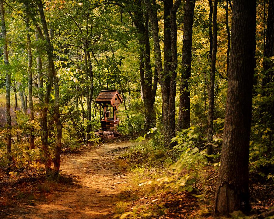 Beautiful Landscape Photograph - Wishing Path by Jai Johnson