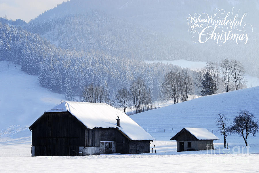 Winter Photograph - Wishing You A Wonderful Christmas by Sabine Jacobs