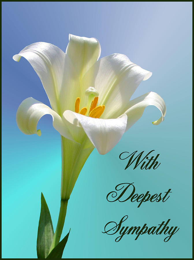 Sympathy Photograph - With Deepest Sympathy by Kristin Elmquist