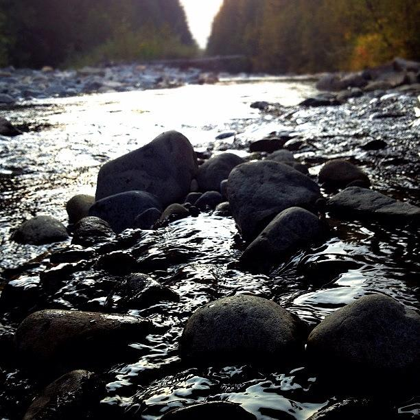 Sandpoint Photograph - Within the Creek by Adam Lawrence