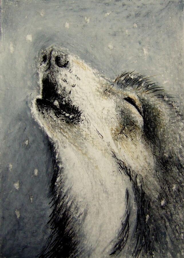 печальный волк в картинках все девушки