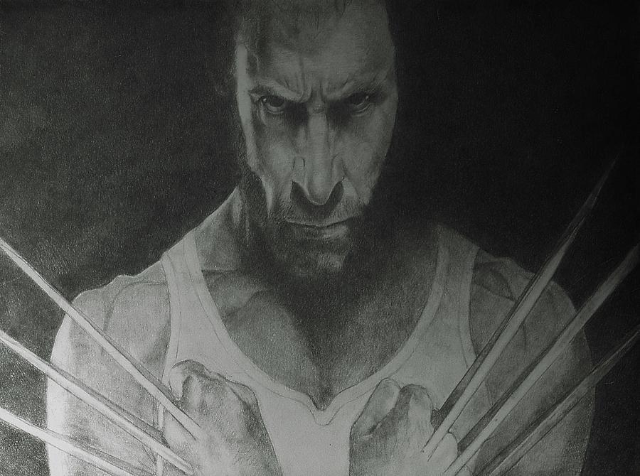 Portrait Drawing - Wolverine by Glenn Daniels