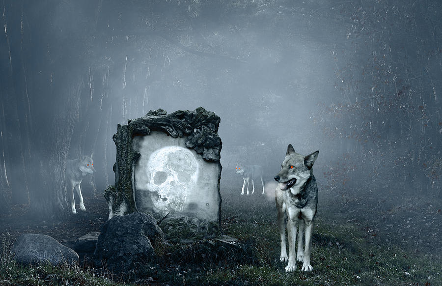 Autumn Photograph - Wolves Guarding An Old Grave by Jaroslaw Grudzinski
