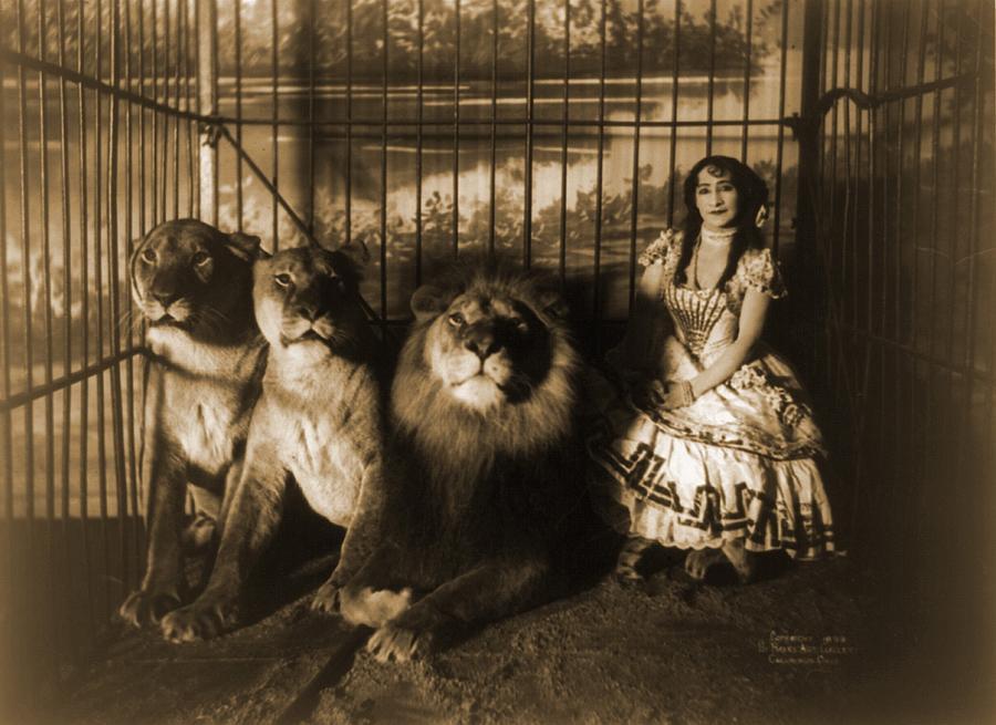 https://images.fineartamerica.com/images-medium-large/woman-circus-performer-named-adjie-everett.jpg