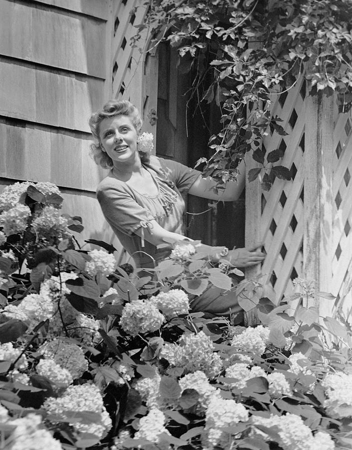 Adult Photograph - Woman Outside Of Home, Near Hydrangea Bush by George Marks
