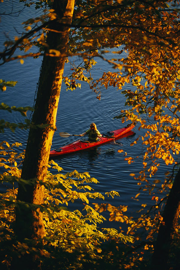 North America Photograph - Woman Seakayaking On The Potomac River by Skip Brown