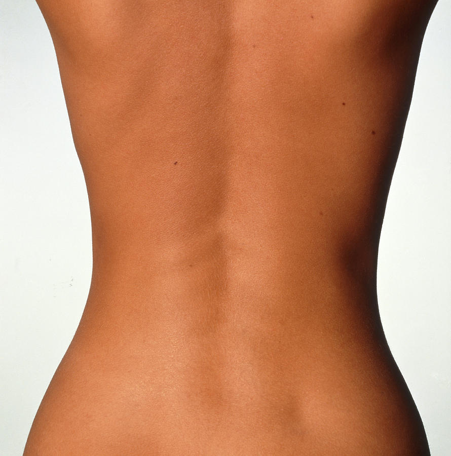 Torso Photograph - Womans Back: Posterior View Of The Torso by Phil Jude