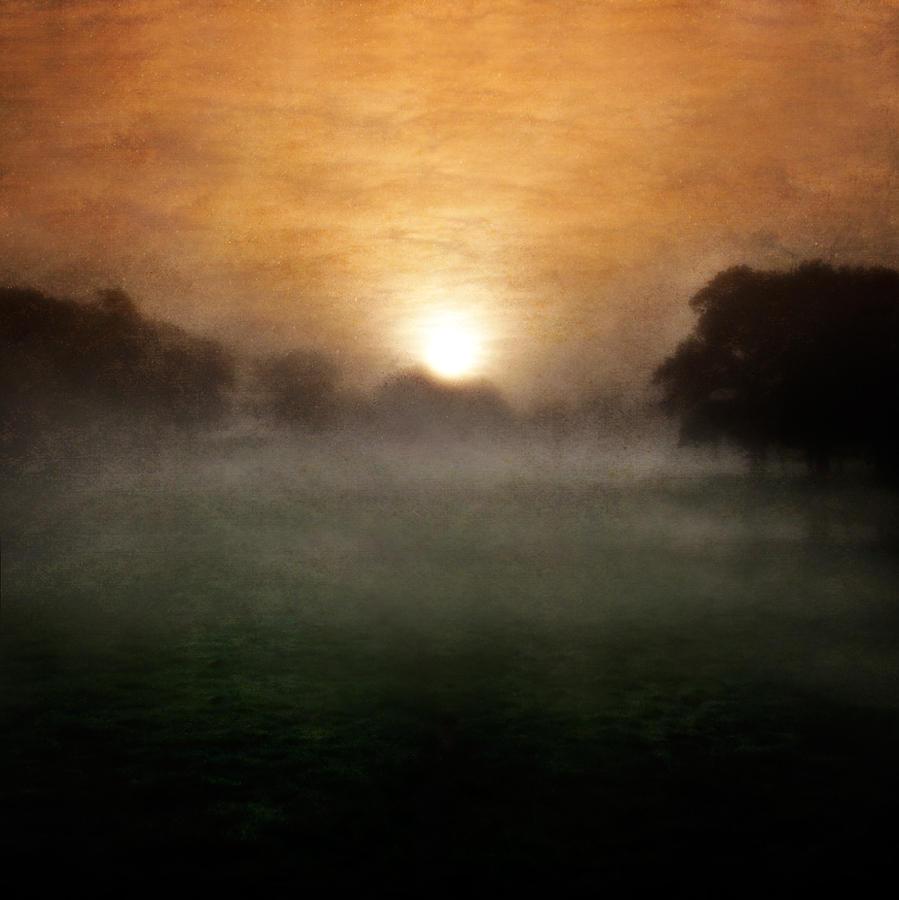 Wonder Pyrography - Wonder by Ian David Soar